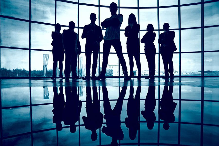 Nine-Elephants-Consulting_360-Marketing_Professional